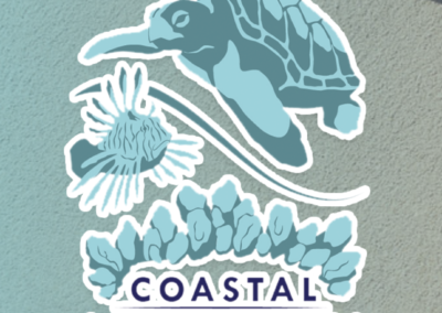 Coastal Connections – Website