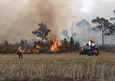 Conservation Land Videos